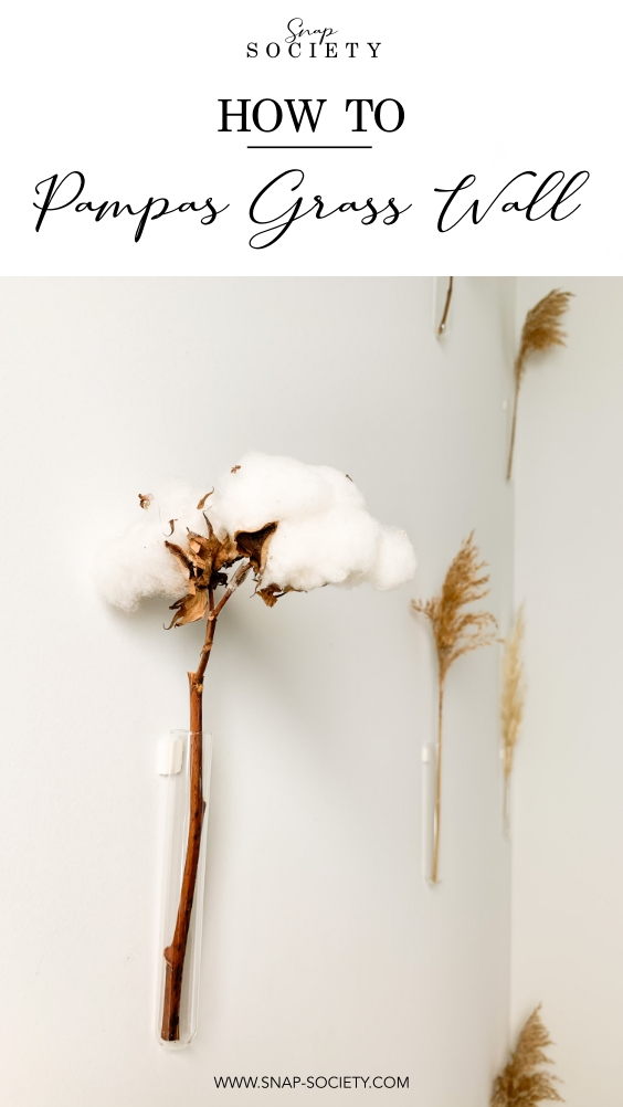 DIY Pampas grass wall